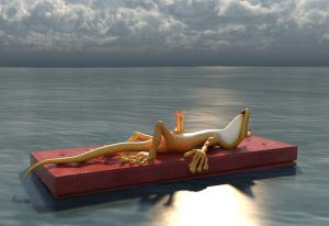 geko floating on a raft