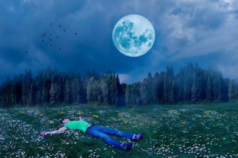 man sleeping in meadow