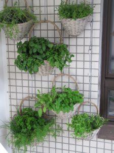 vertical balcony herb garden